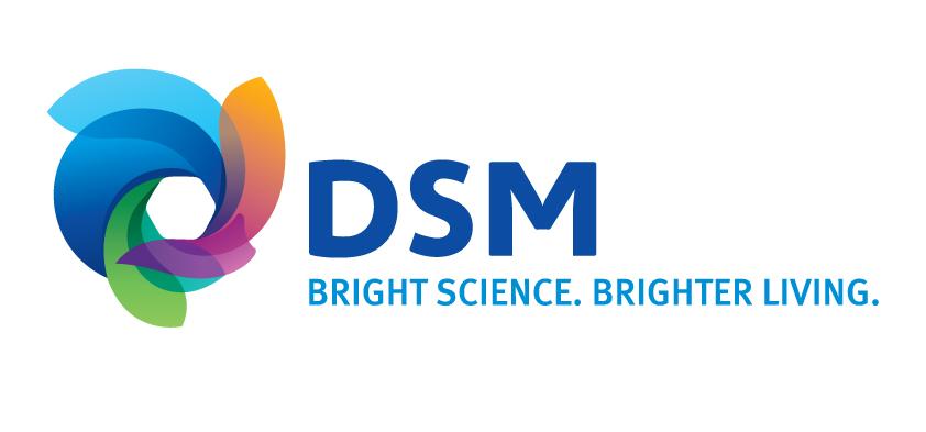 dsm-logo-jpg-version